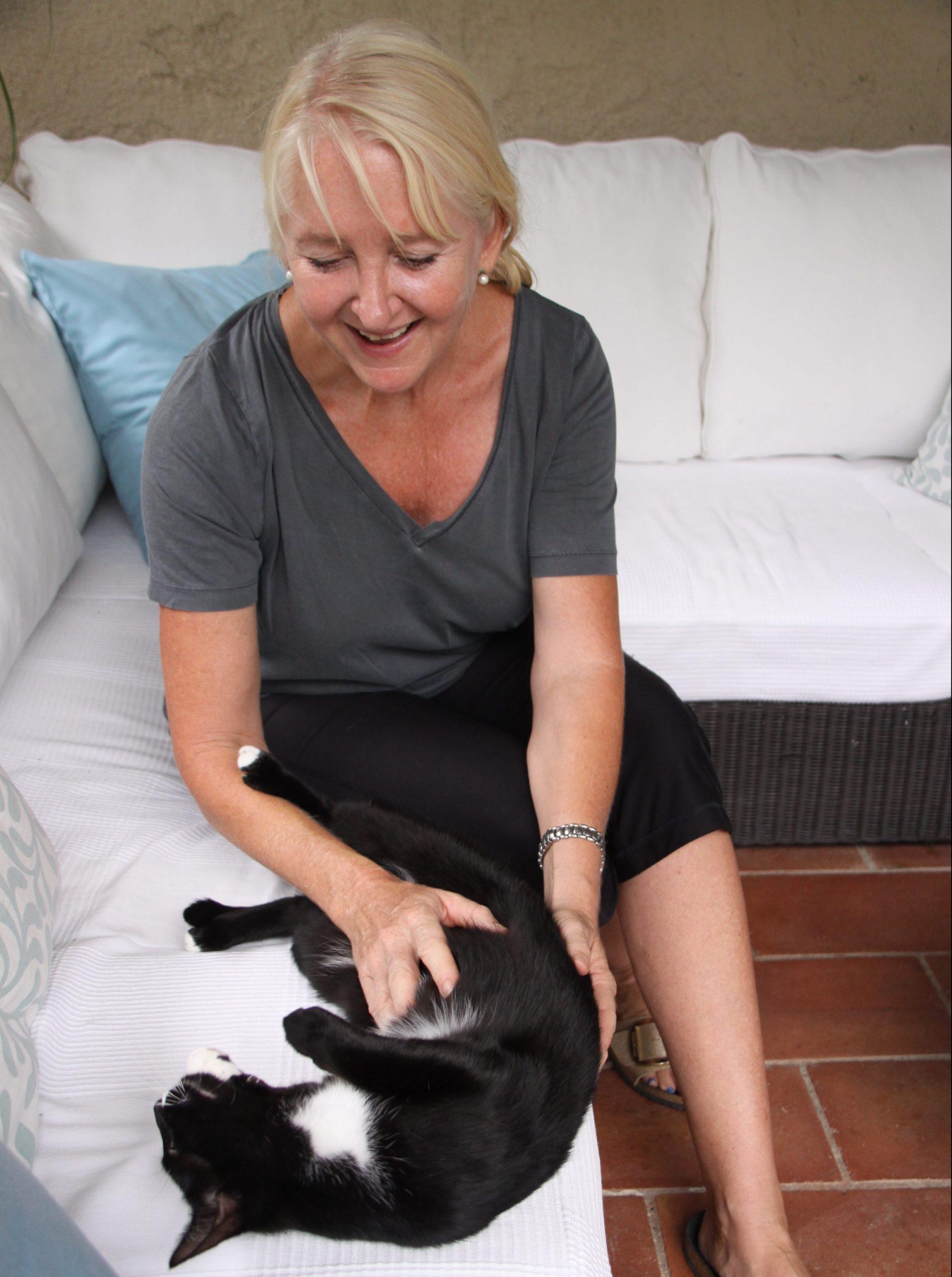 Thérapie de chat